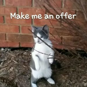 Other - Please make me an offer